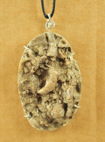FOSSILISED SEA BED, WITH BRYOZOA, PENDANT set in STERLING SILVER 70mm